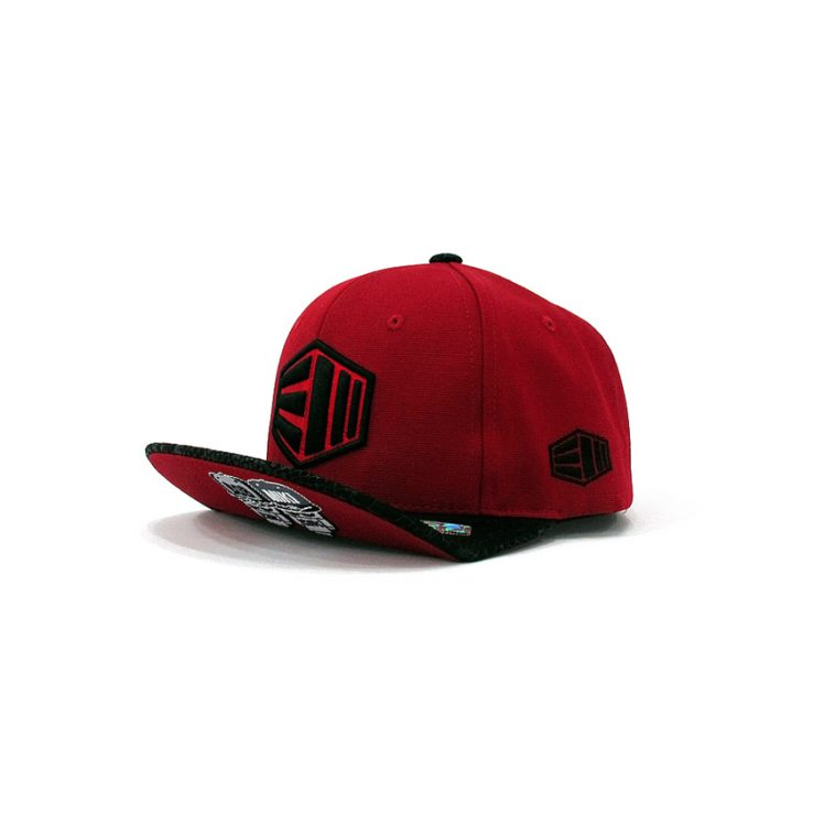fas-01snapback_s